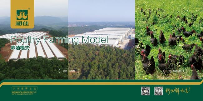 湘佳股份:一体化经营的全产业链优势 造就其成为农业产业化龙头企业